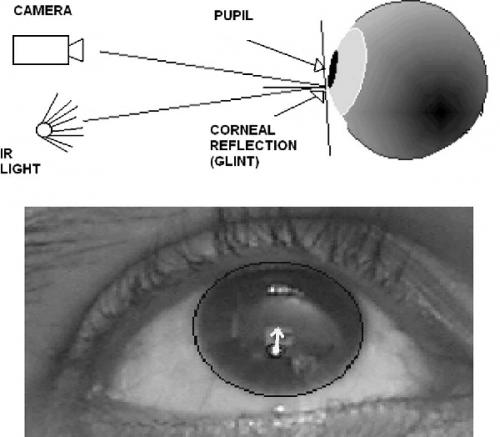 Figure 1 from Iris Center Corneal Reflection Method for Gaze ...